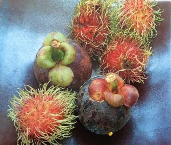 Travel-Cutie-Favorite-Tropical-Fruit-from-Bangkok-Thailand-Markets-Mangosteen-and-Rambutan-