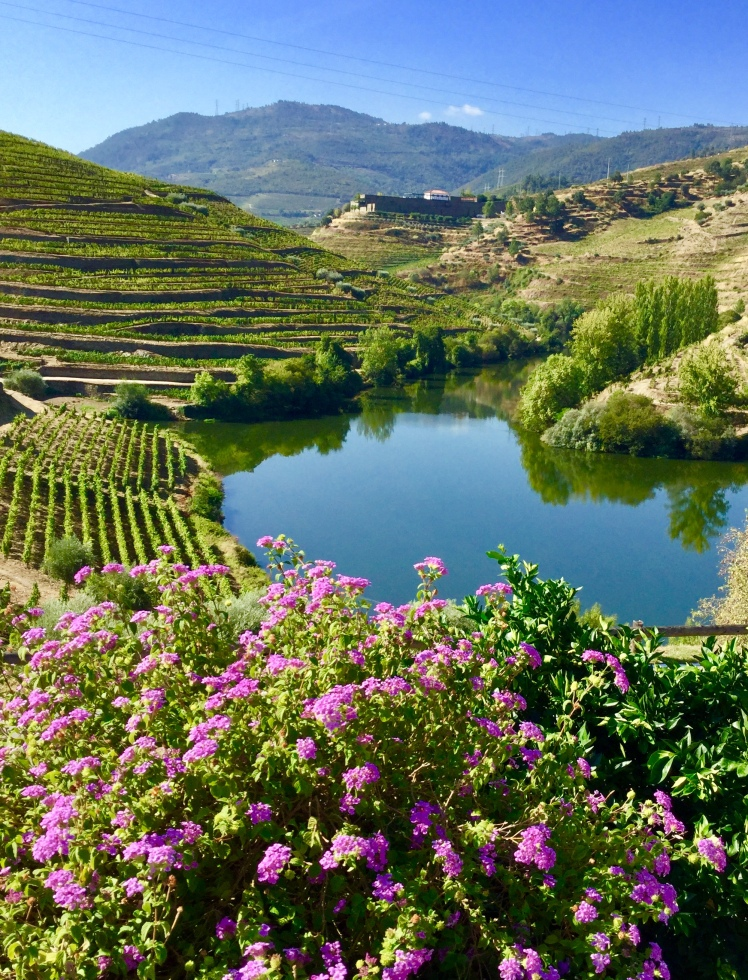 Douro River Valley Portugal near Porto
